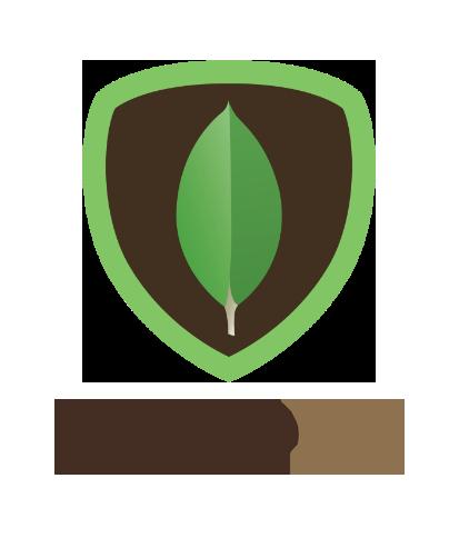 Mongo DB - Lookup